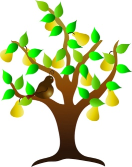 Clip Art Illustration of a Partridge in a Pear Tree
