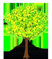 tree-in-spring