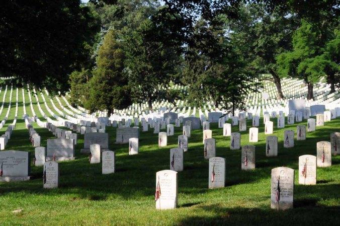 Memorial(0896)
