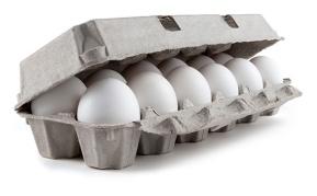 shell-eggs